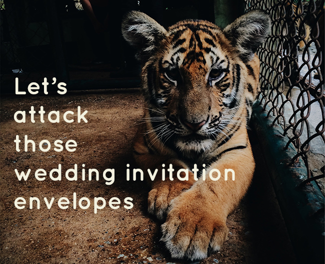 glosite wedding invitation envelope wording